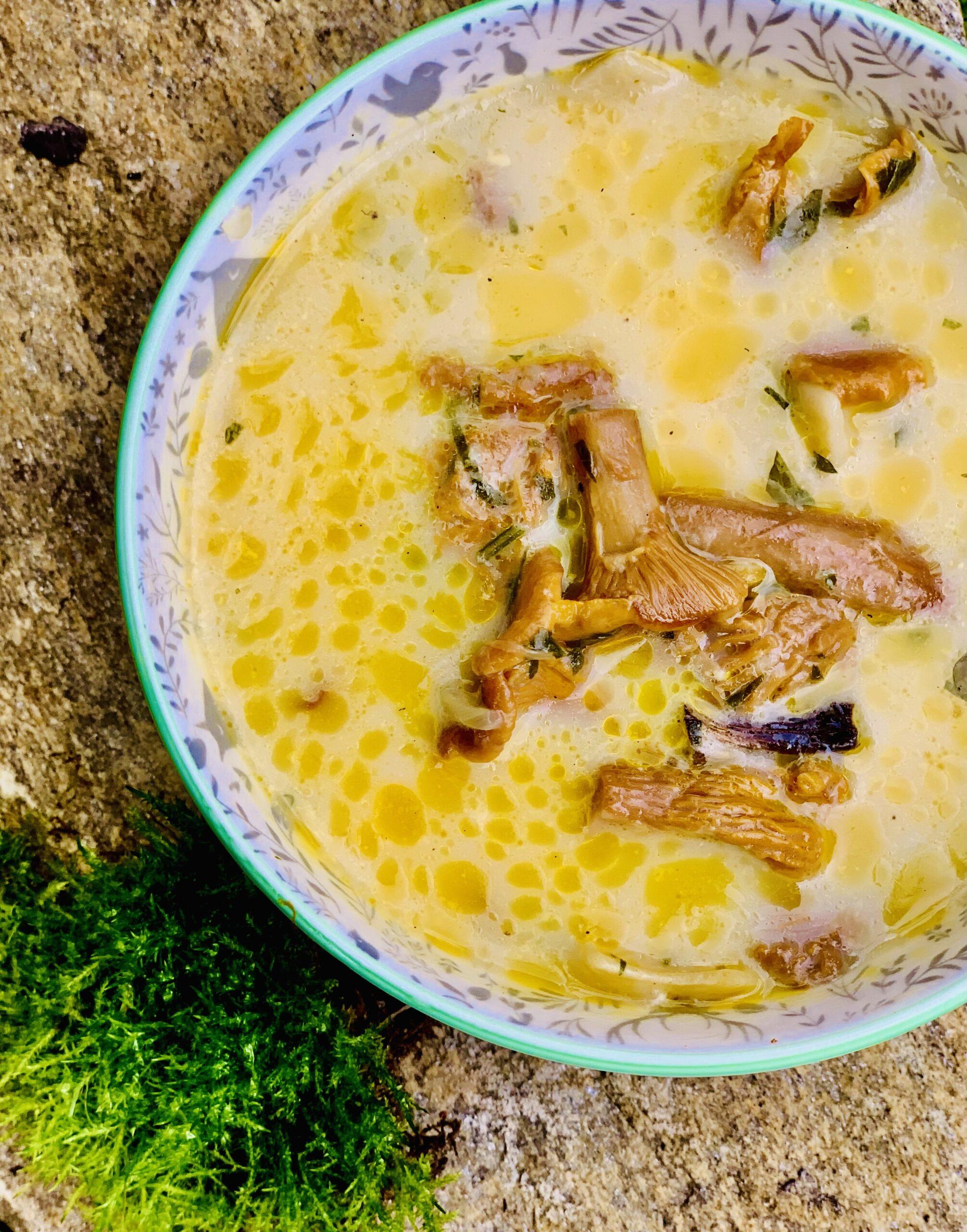 Leśna zupa z kurek.
